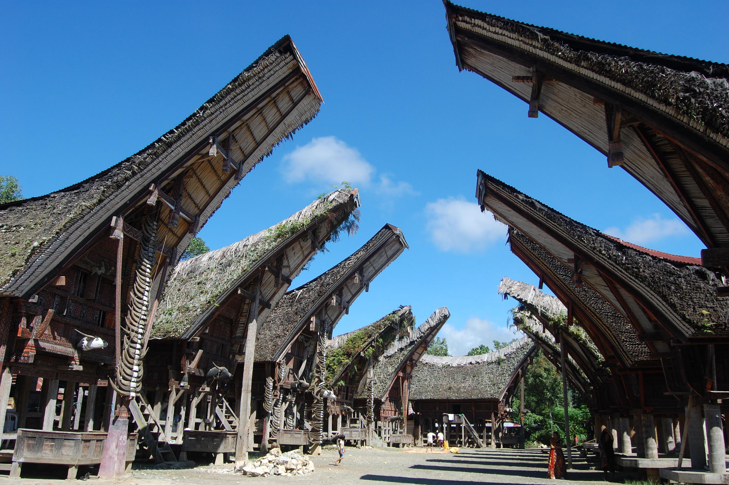 Circuit Tana Toraja (Celebes) 4 jours/3 nuits
