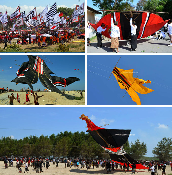 Festival au cerf volant